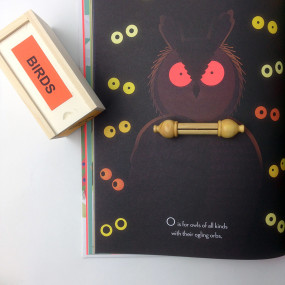 Owl Bird Call and Beautiful Birds book