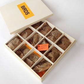 12 Birds of Europe Bird Calls Gift Box