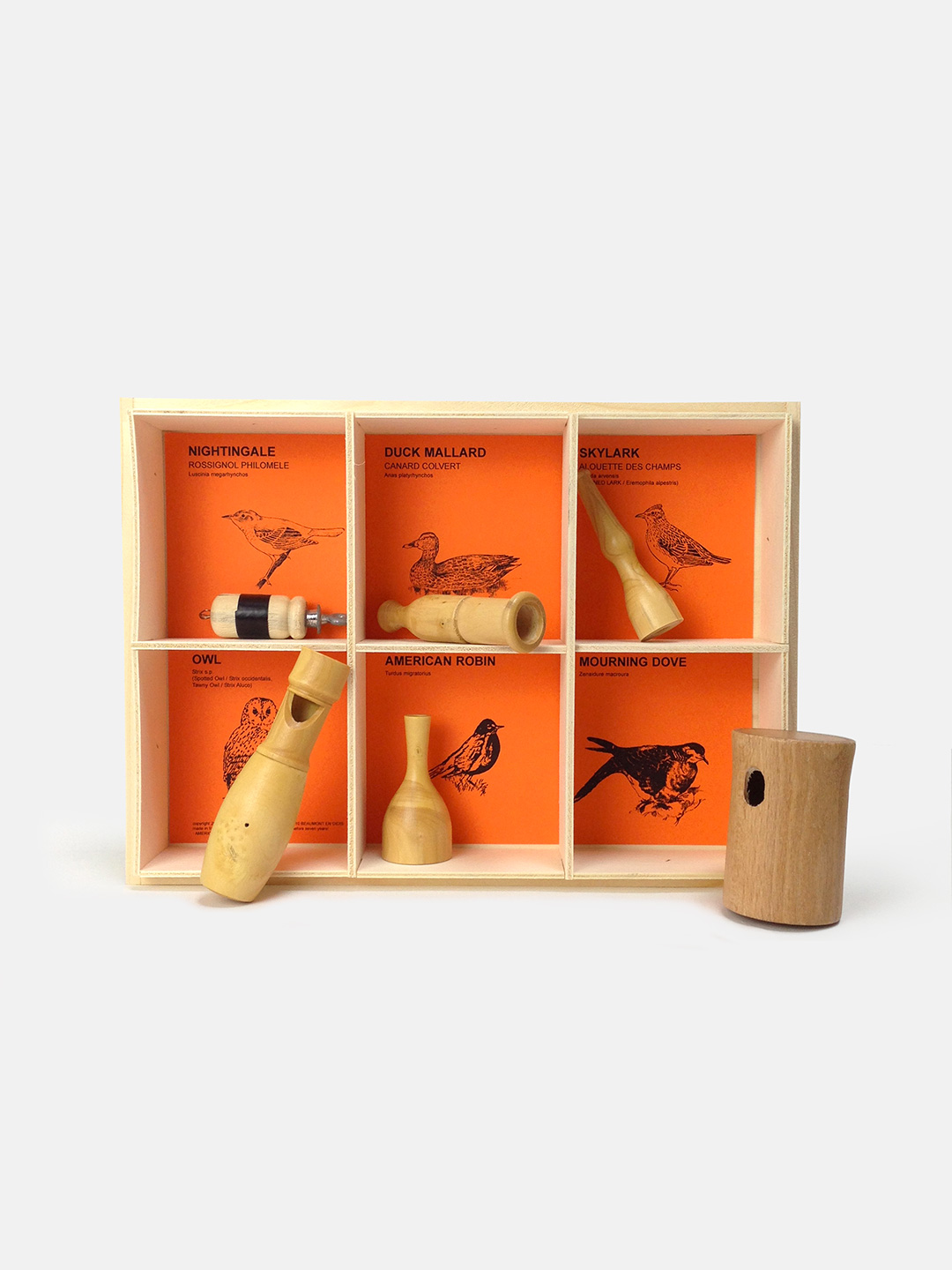 6 American Birds Selection Gift Box
