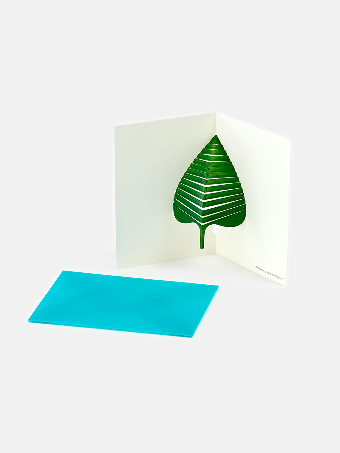 Leaves Message Card