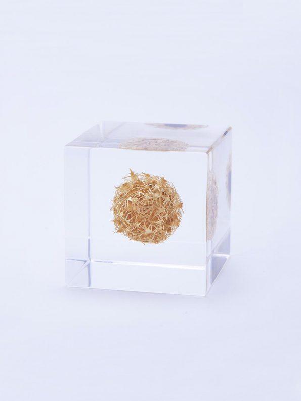Sola Cube – Basket Flower