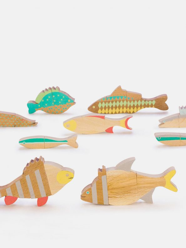 The Fishes of Balaton Magnetic Puzzle