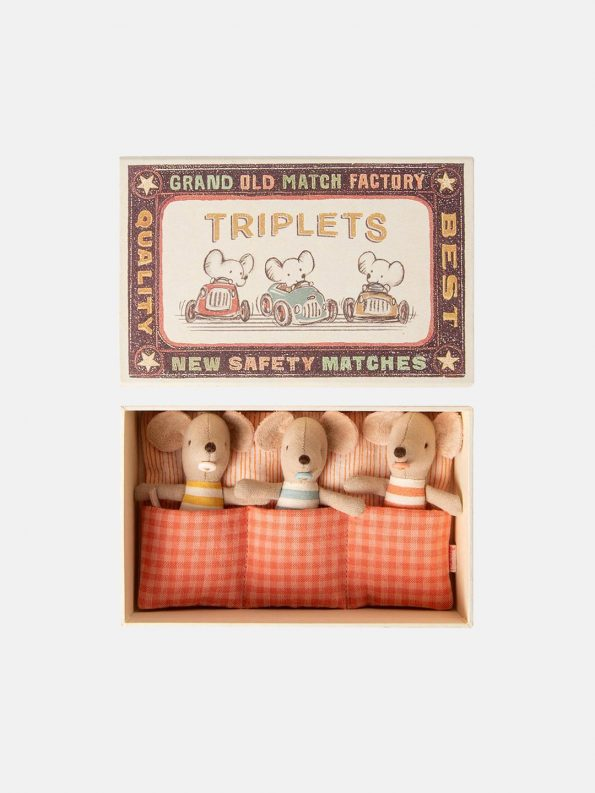 Baby Mice Triplets in a Matchbox